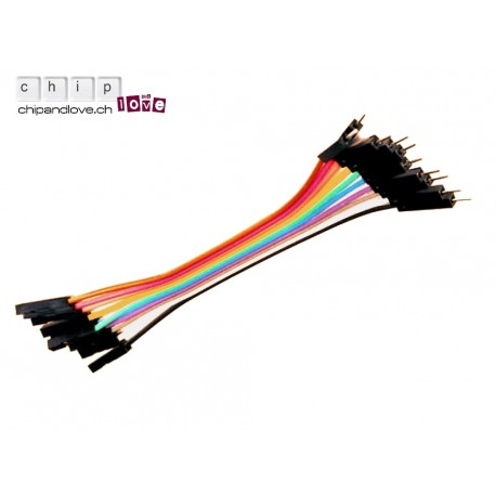 10 câbles Dupont mâle-femelle 20cm